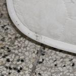 macchie fecali sui bordi di un materasso infestato