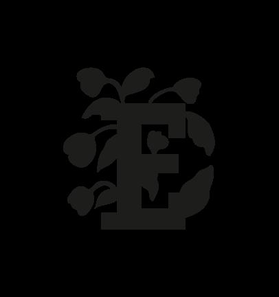 Elleboro puzzolente-08
