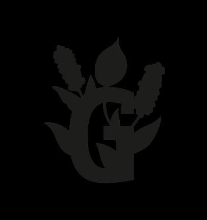 Gigaro chiaro-10