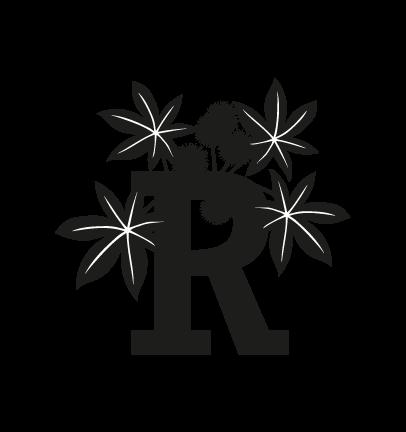 Ricino-15