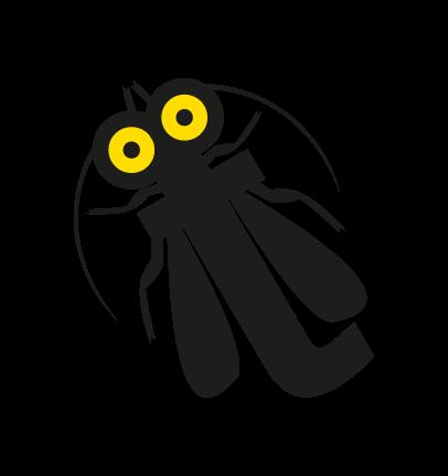 tignola-fasciata-15