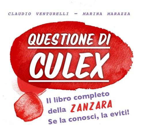 questione-di-culex-little