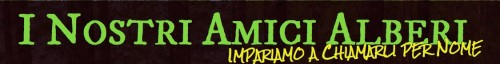 Logo Inostriamicialberi