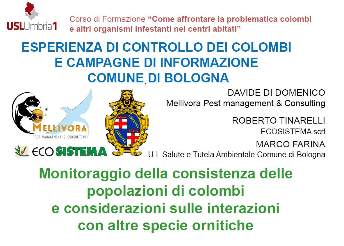 Di Domenico