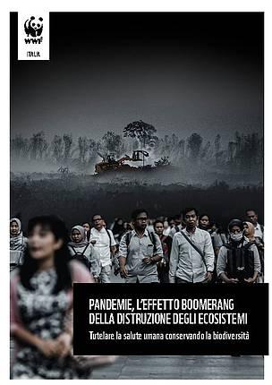 pandemie_e_distruzione_degli_ecosistemi_66707